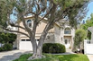MINT CONDITION TREE SECTION HOME