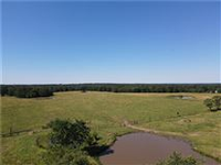 PERFECT COUNTRY LIVING PARCEL OF LAND