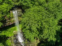 BEAUTIFUL WOODED ACRES WITH NINETY FOOT WATERFALL