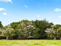 BEAUTIFUL LAND PLOT READY TO BUILD A DREAM HOME