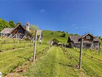 WILLOW VINEYARD AND WINERY WITH EUROPEAN INFLUENCED VILLA