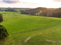 SIZEABLE LAND PLOT IN THE NEW ZEALAND COUTNRYSIDE