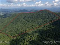 AMAZING OPPORTUNITY TO OWN 117 ACRES